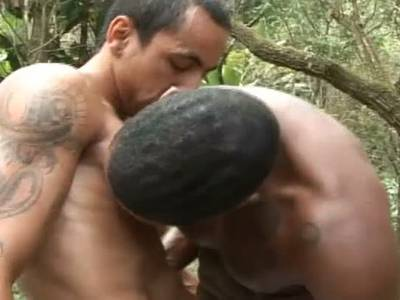 Gay Boys treiben Outdoor Analsex